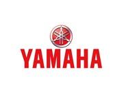 Yamaha YDS