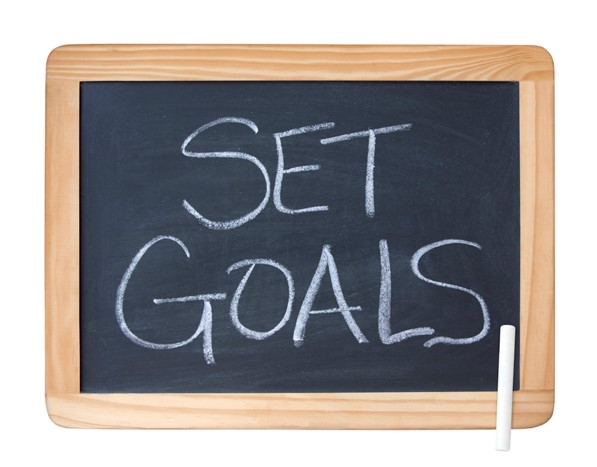 Establish Goals for the upcoming year